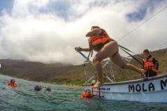 Experiencia: Excursión Náutica Bahía Las Cañas, Papudo