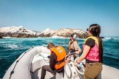 Experiencia: Excursión Náutica por el Borde Costero de Papudo