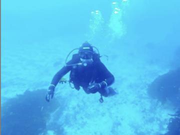Experiencia: Buceo Guiado en Antofagasta