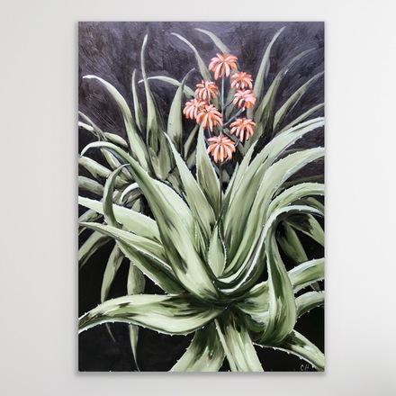 Selling: Torch Aloe