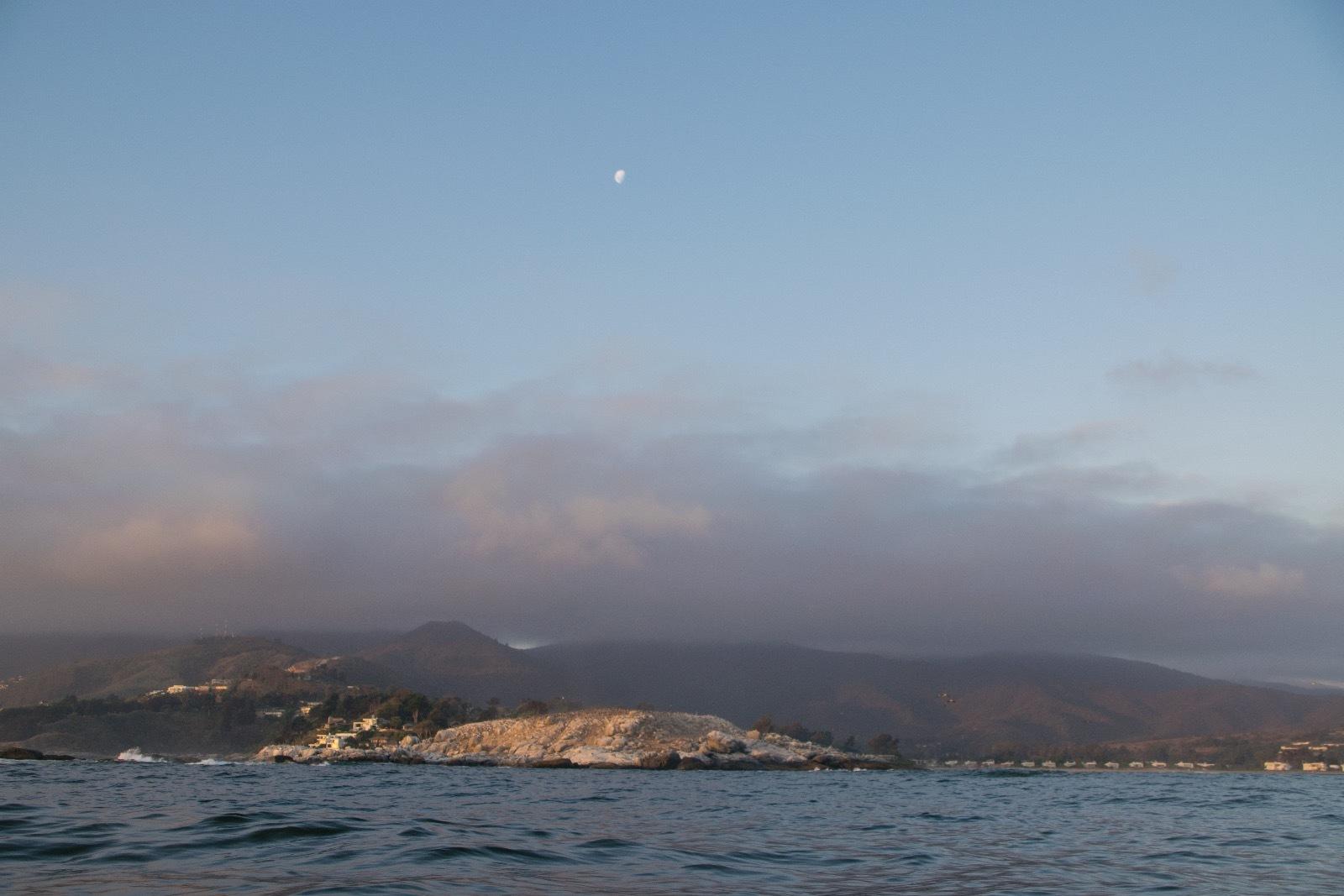 Birdwatching Monumento Natural Isla Cachagua