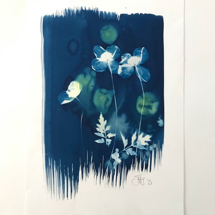 Cyanotype with poppies 15