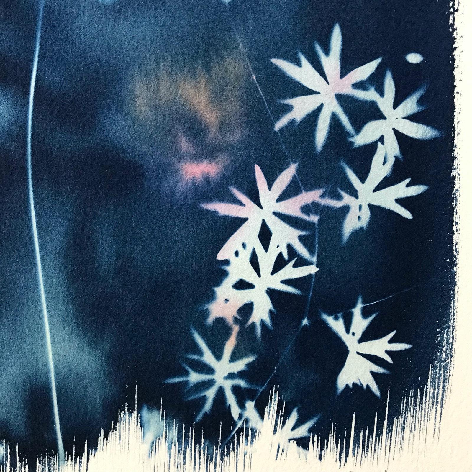 Cyanotype with anemone 16