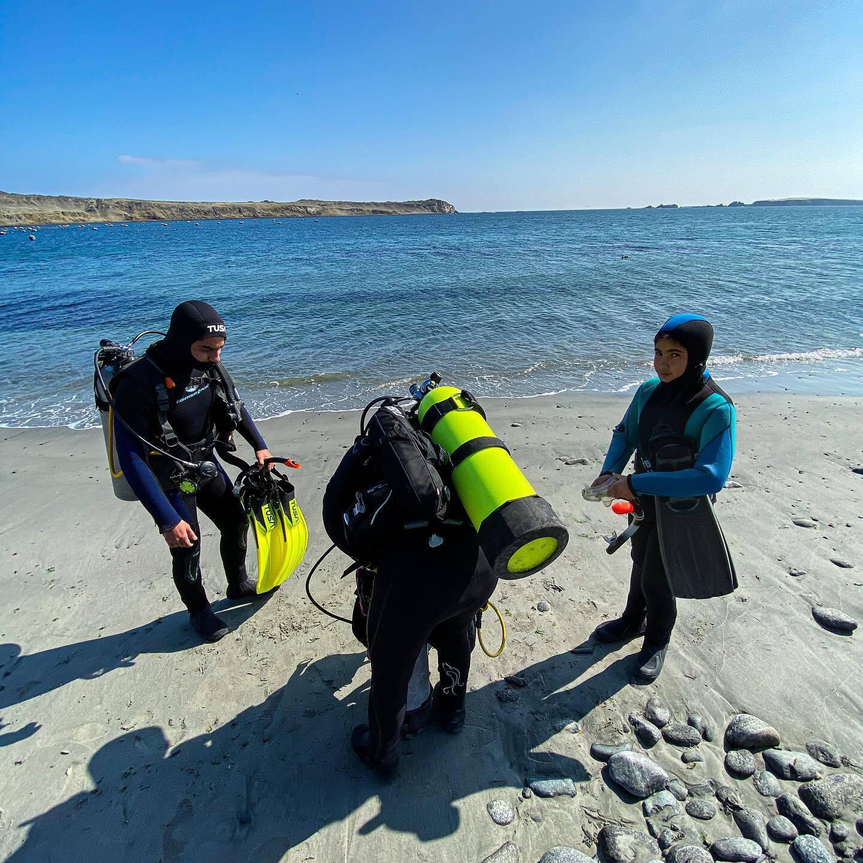 Buceo guiado simple en Antofagasta