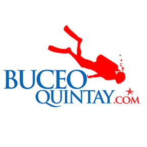 BuceoQuintay